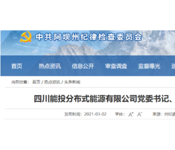 四川能投分布式能源有限公司党委书记、董事长张鹏接受监察调查