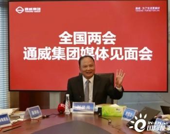 刘汉元代表:推进清洁能源替代,加快碳中和进程【两会声音】
