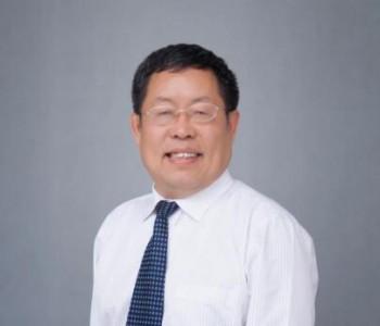 全国政协委员李灿:鼓励绿氢与化石能源生产相耦合
