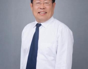 全国政协委员李灿:鼓励绿氢与化石能源生产相耦合【两会声音】