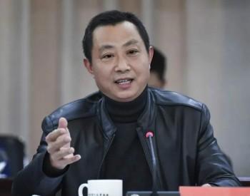 """全国人大代表张林顺:国网""""绿动力""""让村民吃"""