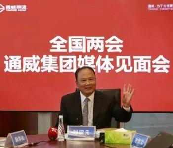 详细案例+4点建议!刘汉元代表:落实可再生能源保