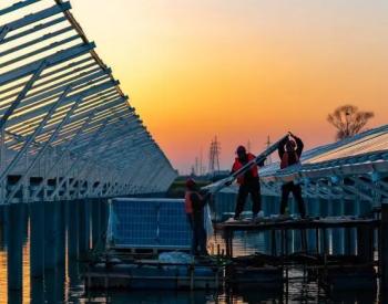 安徽肥东:渔光互补光伏电站加紧施工