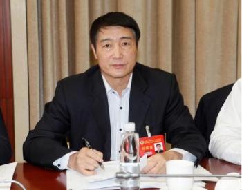 蔡庆锋委员:实现碳达峰应充分发挥天然气桥梁作用【两会声音】