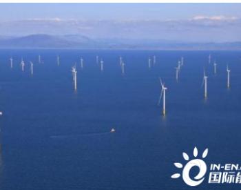 韩国大型风力发电场建成?将提供5600多个就业岗位
