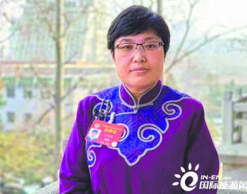 全国政协委员杜明燕:提高供电可靠性 服务经济社