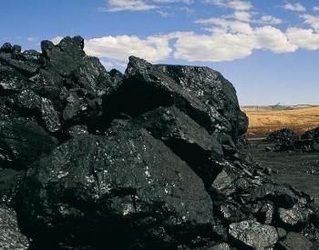 淡季煤价上涨 贸易商看好今年煤市