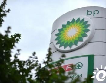 """核心团队裁员超85%,BP向""""超越石油""""挺进!"""