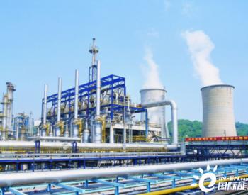 中国<em>燃料油市场</em>消费结构分析及市场需求潜力盈利性可以这样判断