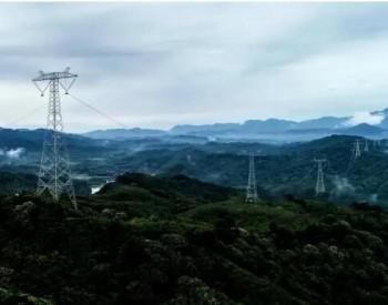 刘振亚:实现碳达峰碳中和的根本途径