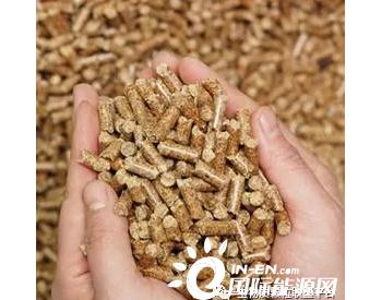 专家强调加大林业生物质成型燃料技术推广力度