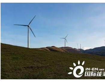 电力行业碳中和的实施方式和障碍