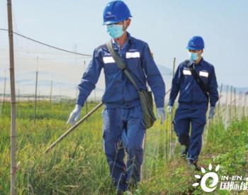 海南电网公司农网改造优结构