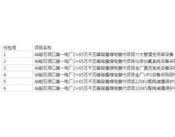 招标 | 华能石洞口第一电厂2x65万千瓦等容量煤电替代项目第四批辅机设备二级集采招标招标公告
