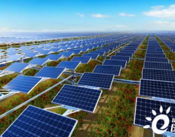 全球最大农光互补电站:<em>华为智能光伏</em>助力 累计减少碳排放200万吨