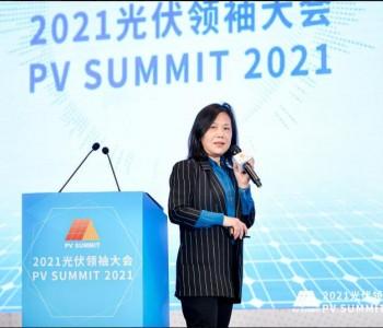 蒋莉萍:对能源高质量发展要求下电力发展问题的几点思考