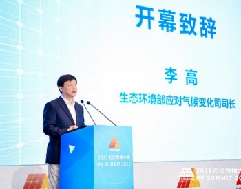 李高:大力提升风电光伏发电规模,推动构建以新能源为主体的新型电力系统