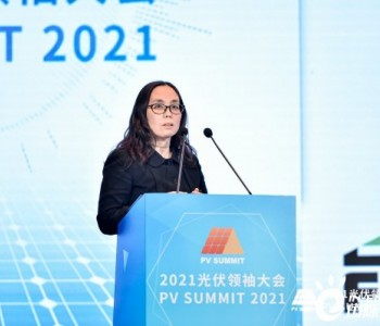 时璟丽:光伏发电政策形势与平价时代展望