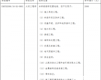 招标 | 金沙江上游<em>拉哇水电站</em>泄洪系统工程施工招标公告