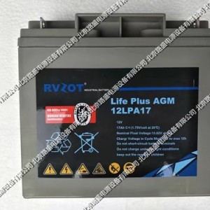 法国路盛蓄电池12LPA40 12V40AH Rvzot
