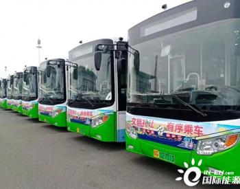 助力建设绿色海滨城市 银隆新能源公交车再度加盟广东湛江