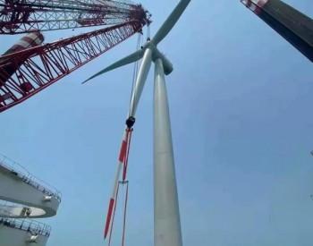 广东粤电湛江外罗海上风电项目二期首套塔筒顺利吊装