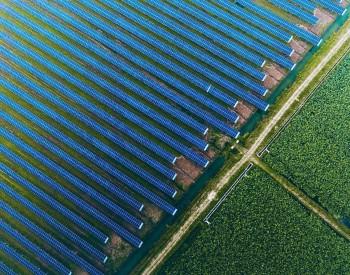 全球第三!天合光能发布2020财报,组件出货15.915GW,营收近300亿