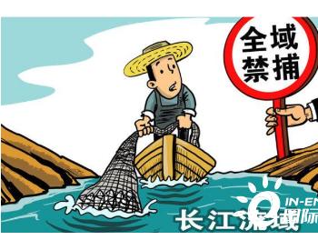 4月起实施!长三角三省一市同步发布长江流域禁捕