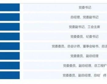 三峡新能源换帅:王武斌任党委书记、董事长人选