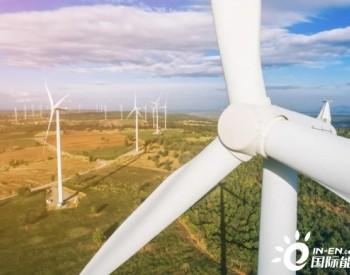 """可再生能源如何告别""""单打独斗""""?"""
