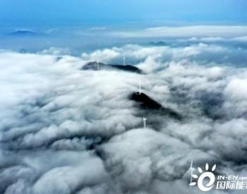 年发电量超5226万度,浙江舟山绿色能源风中来