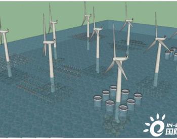 海洋牧场与海上风电融合发展现状、理念与展望