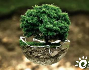 """光大绿色基金:投资碳中和主要有三条""""赛道"""""""
