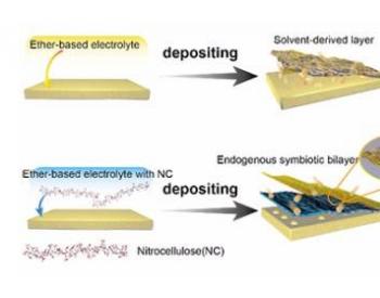 研究发现内共生氮化锂/纤维素层可延长锂金属负极循环寿命