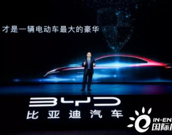 王传福:刀片电池向全行业外供!