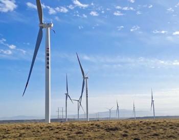 榜单!WoodMac发布全球前15大风电整机商2020年市场份额及排名