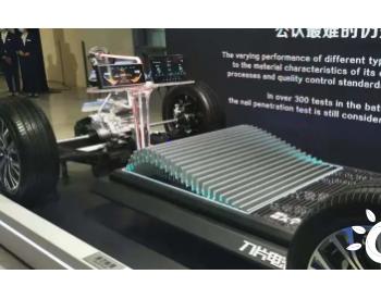 硬钢<em>宁德时代</em> 比亚迪宣布纯电全系搭载刀片电池