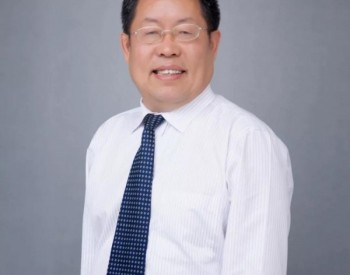 """李灿:利用""""液态阳光""""技术,助力中国实现双碳目标"""