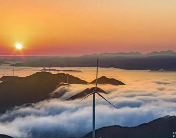 才入平价就变低价,细数新增<em>风光项目</em>电价体系之不合理