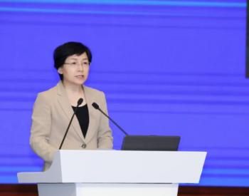 """李雅兰:实现""""双碳""""目标,天然气担当关键角色"""