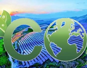 林业碳汇交易市值可达千亿