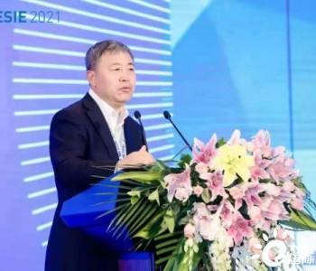 郑耀东:应因地制宜选择适合的储能,抽水蓄能仍将