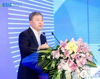 郑耀东:应因地制宜选择适合的储能,抽水蓄能仍将是主力军