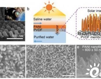 苏大靳健教授/中科大李文卫教授合作:具有垂直聚苯胺纳米纤维层状结构的光热膜用作高效的太阳能膜蒸馏海水淡化