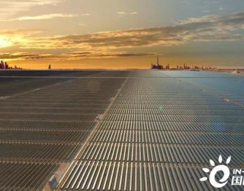 海湾合作委员会的可再生能源转型开启了新绿色经济的潜力