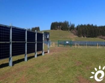 德国<em>电力供应</em>商测试垂直农光一体化系统
