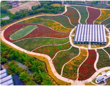 浙江台州市土壤污染综合防治先行区建设终期评估项