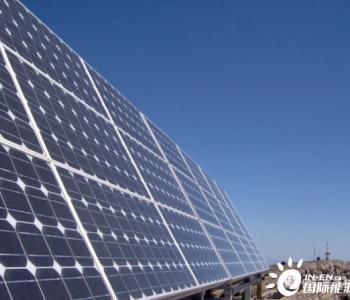 """阿联酋推出全新能源战略""""3000亿迪拉姆行动""""!"""