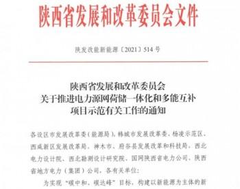 陕西省发展和改革委员会关于推进电力源网荷储一体化和多能互补项目示范有关工作的通知