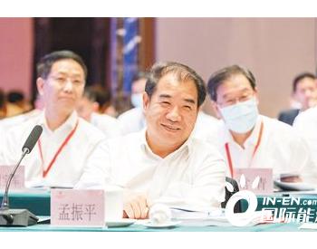 孟振平:构建新型电力系统支持自贸港建设